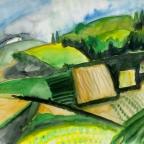 Felder in Hügellandschaft