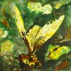 Gelber Falter - 1