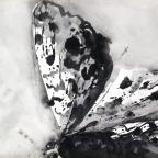 Kaisermantel - 5