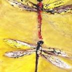 Libellenpaar - 2