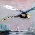 Libelle im Flug - 1