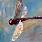 Libelle im Flug - 2