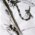 Libellenpaar - 1