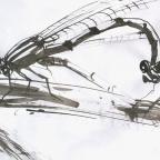 Libellenpaar - 3