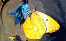 Tuschaquarell auf Papier: 34,5 x 39 cm