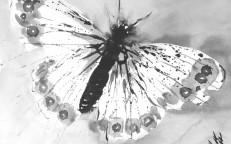 Tuschaquarell auf Papier: 24,5 x 30 cm