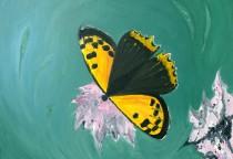 Schmetterlingsbilder - auf Leinwand